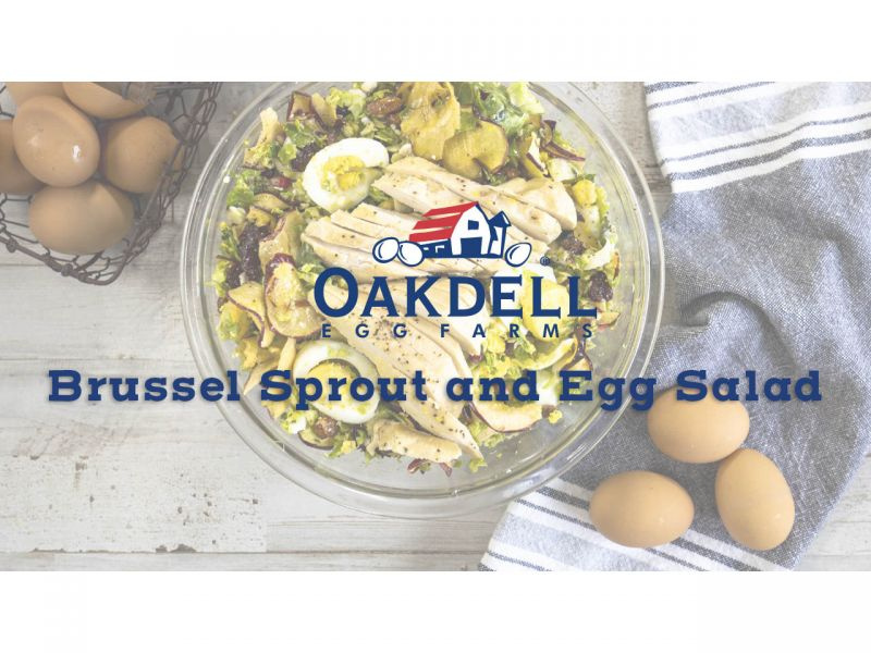 Brussel Sprout and Egg Salad