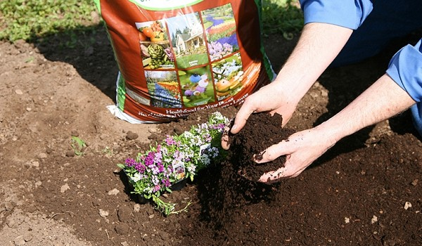 How to Improve Your Soil with Oakdell Organic Compost